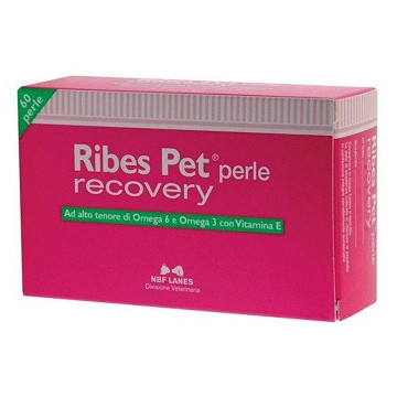 RIBES PET RECOVERY 60PERLE...